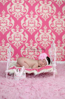 Pink Damask Backdrop - Great Newborn Girl Photo Prop - Item 1740