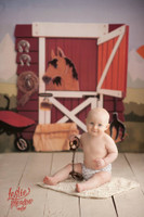 Horse Stable Equestrian Photo Backdrop - Item 2030