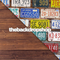 License Plate / Faux Wood Floor - Items 1478 & 1293