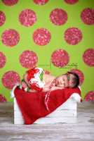 Christmas Backdrop - Green and Red Glitter Dot Backdrop - Polka Dot Photo Background - Exclusive Design - Item 2121
