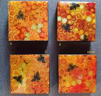 Bee Hive Blocks