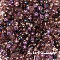 Amazing Amy - Sz 8 Seed Bead Mix