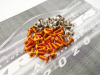 Hiro Seiko XRAY T4'20 Titan/Alum Hex Socket Screw Set (Orange)