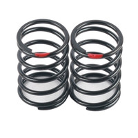 ARC R10 Shock Spring 0.36 Red (2 pcs)