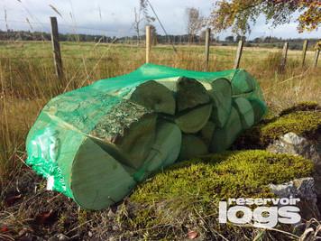 BEECH - 25cm Logs