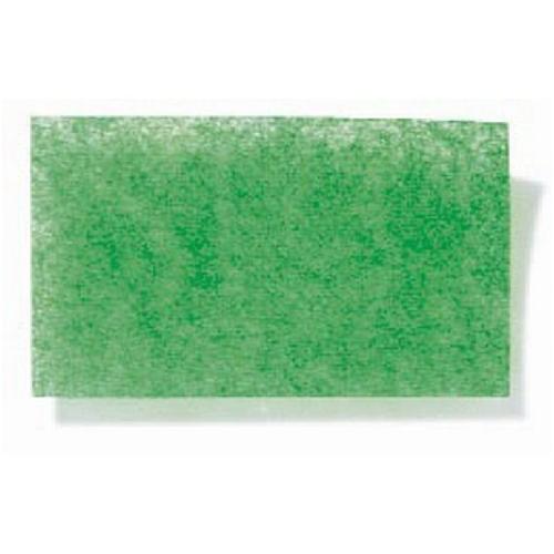 Flower Tissure Paper Pack - Green