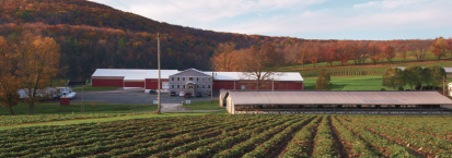 Pallman Farms Location