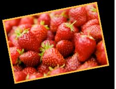 You-Pick Strawberries