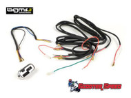 Vespa Wiring Loom AC Electronic BGM PRO (A4-9077011)