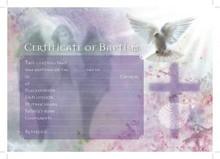 NEW Baptismal Certificates Cross & Dove Inc Envelopes- Pack 25