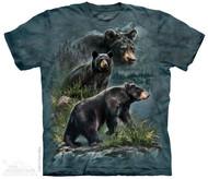 THREE BLACK BEARS