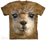 BIG FACE ALPACA