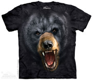 AGGRESSIVE BLACK BEAR
