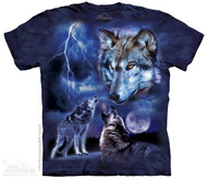 WOLVES OF THE STORM
