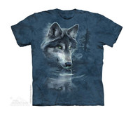 WOLF REFLECTION - CH