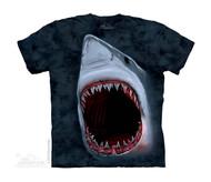 SHARK BITE - CH
