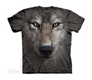 WOLF FACE - CH