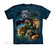 BIG CATS JUNGLE - CH