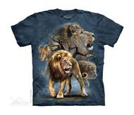 LION COLLAGE - CH
