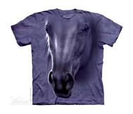 HORSE HEAD - CH
