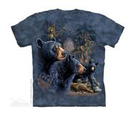 FIND 13 BLACK BEAR - CH