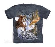 FIND 11 OWLS - CH