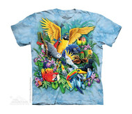 BIRDS OF THE TROPICS - CH