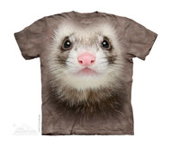 FERRET FACE - CH
