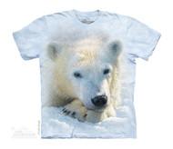 POLAR BEAR CUB - CH