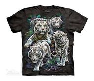 MAJESTIC WHITE TIGERS- CH
