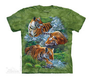 WATER TIGER C - CH