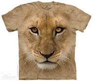 BF LION CUB