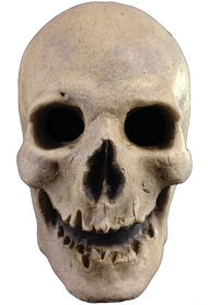 Antique Skull Mask