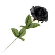 Black Imitation Rose