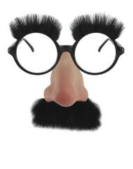 Groucho Marx Groucho Glasses