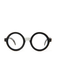 Warner Bros Harry's Glasses