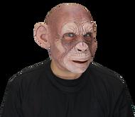 Julius Ape Image