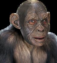 Blake Ape Image