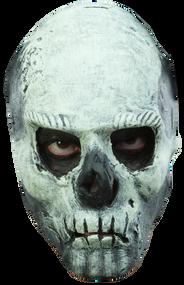 Glow in the Dark Skull Image