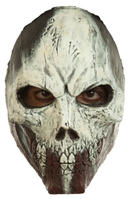 Assault Skull Mask Image