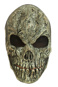 Old Skull Image