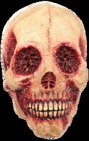 Bloody Skull Image
