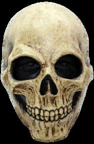 Bone Skull Image