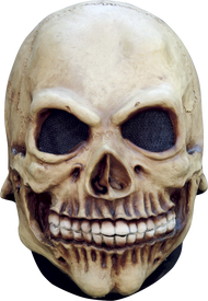 Junior Skull Image