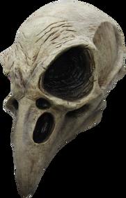 Crow Skull Image