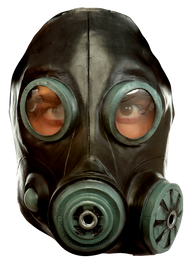 Smoke Mask (Black) Image