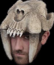 Saber Tooth Helmet Image
