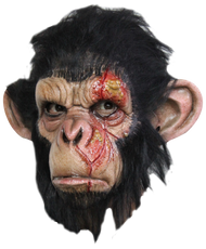 Infected Chimp Image