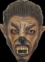 Wolf Jr. Image
