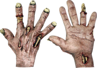 Zombie Flesh Hands Image